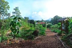 1-X_X_X_Black-MountainNC-Community-Garden_Main-Entry