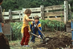 Saratoga_30_The-Saratoga-Garden-Children-Gardening_courtesy-The-Chadwick-Society