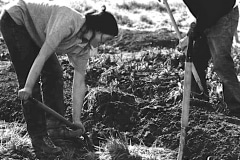 Saratoga_40_Adrienne-Borg-unknown-person-preparing-garden-bed_courtesy-The-Chadwick-Society