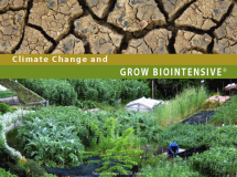 3a-Climate Change & Grow Biointensive_by Ecology Action_Suggested Further Reading