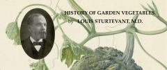 History Of Garden Vegetables_by Louis Sturtevent_Suggested Further Reading