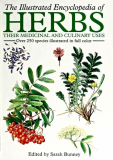 Illustrated Encyclopedia Of Herbs by Sarah Bunney