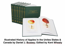 Illustrated History of Apples In The United States & Canada by Daniel j. Bussey; Edited by Kent Whealy