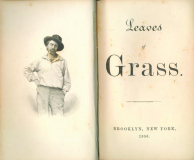 Leaves Of Grass_by Walt Whitman_Suggested Further Reading