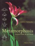 Metamorphosis, Evolution In Action_by Andreas Suchantke_Suggested Further Reading