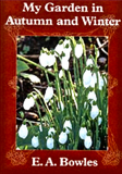 My Garden in Autumn & Winter_by E. A. Bowles_Suggested Further Reading