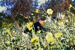 UCSC-00-013_1970_X_X_Alan-Chadwick-tending-flowers_UCSC-Garden_photographer-unknown