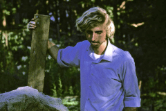 11-1970-71_X_X_The-UC-Santa-Cruz-Chadwick-Garden-Collection_Stephen-Kaffka