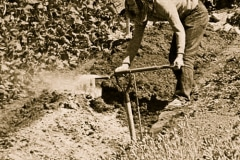 09-1971_X_X_Photos-from-the-Cry-California-Journal-article_apprentice-adding-bonemeal-to-a-raised-bed