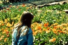 12-X_X_X_UCSC-Chadwick-Garden-Project_apprentice-working-in-the-UCSC-Chadwick-Garden_photographer-unkown_courtesy-The-Chadwick-Society_12