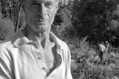 Alan Chadwick in the Garden, 1972